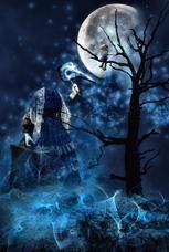 Begegnung im Mondlicht klein.jpg