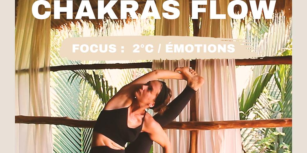 Zoom - Chakras Flow 17/03