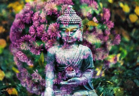 Séance Online #1 - Réveiller ses chakras