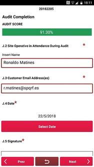 Mobile audit scores.jpg