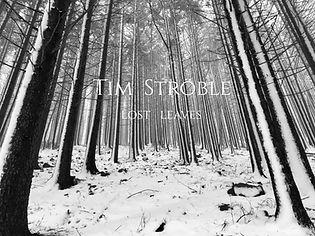 Cover_Tim_Ströble.jpg