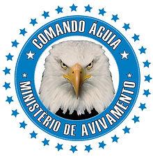 LOGOMARCA COMANDO AGUIA 02.jpg
