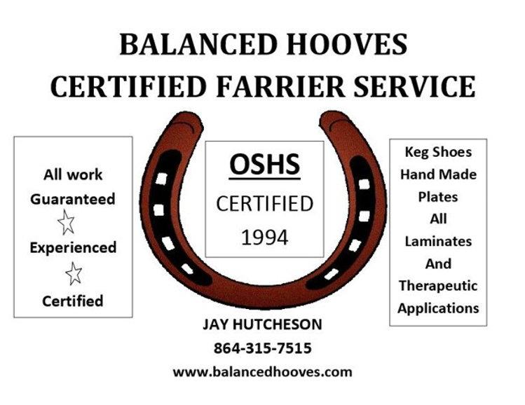 Balanced Hooves with brown horseshoe.jpg