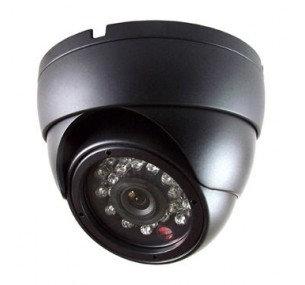 D220 3.6MM 1080P Dome IP Camera