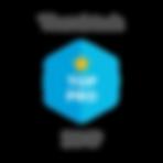 Thumbtack Pro Badge.png