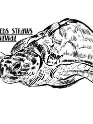 Turtle against straws, 2020
