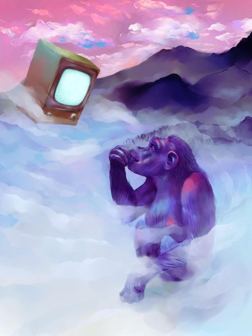 Monkey TV.jpg