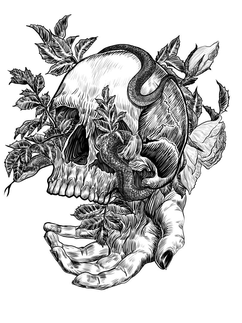 Skull & Roses, 2018