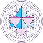 MC Medina Flower of Life