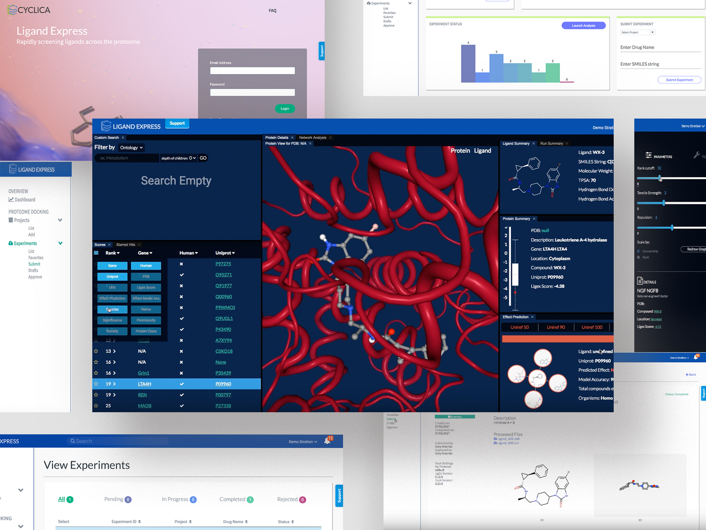 Website_portfolio_LigandExpress_screensh