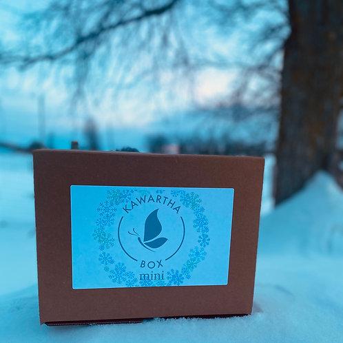 Winter Kawartha Box Mini