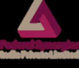 FSIPL Logo Large.png