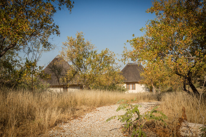 Copy of Mbizi Bush Lodge   (13).jpg