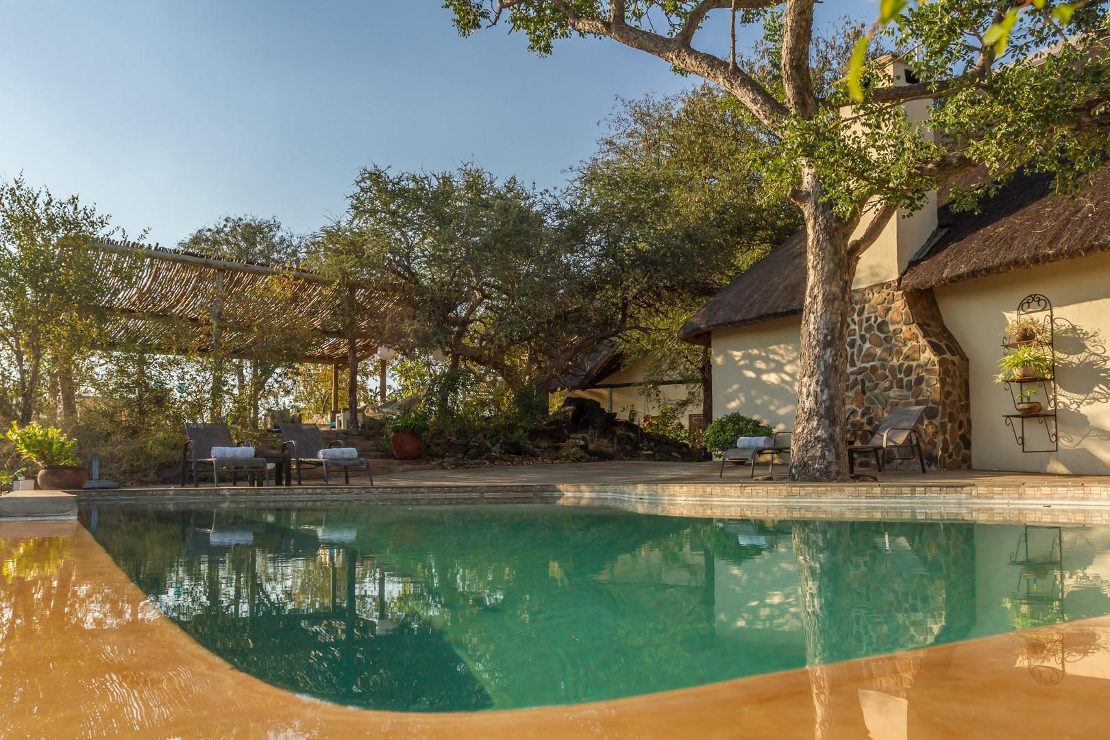 Copy of Mbizi Bush Lodge   (36).jpg