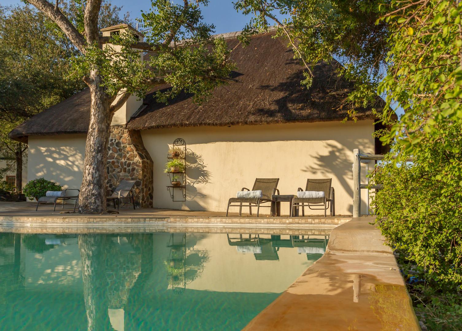 Copy of Mbizi Bush Lodge   (35).jpg
