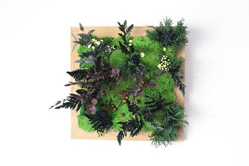 Tableau végétal 30/30 cm