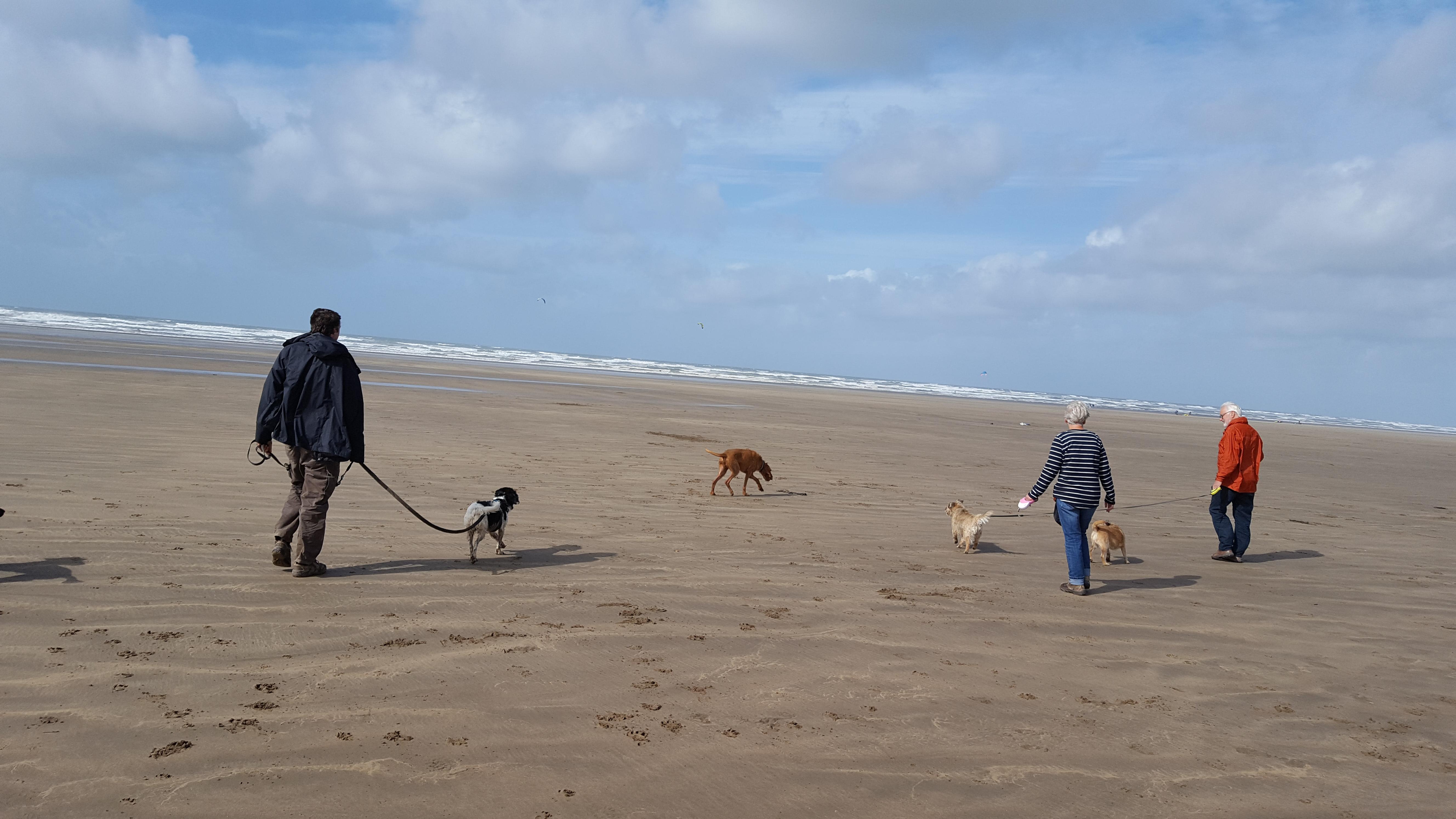 beach family 2