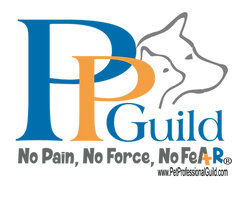 PPG Logo with No Fear Tag and url_PPG wi