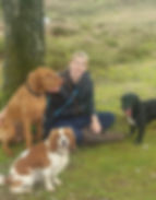 Rebecca and dogs