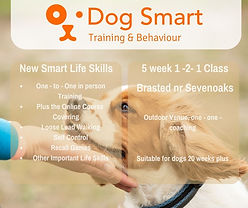 Web New Smart Lifeskills Brasted.jpg
