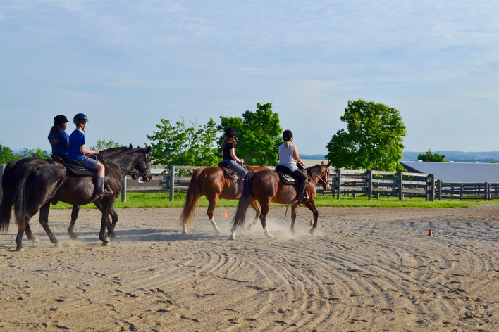 Youth at risk therapeutic riding