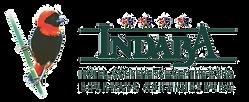 Indaba Logo.png