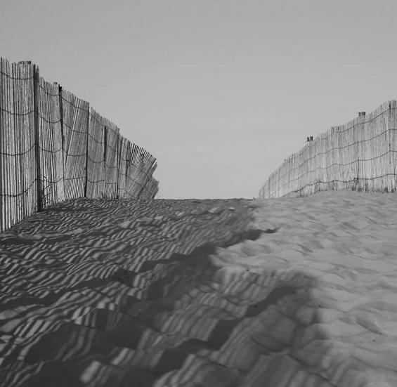 Fence Shadow Photo