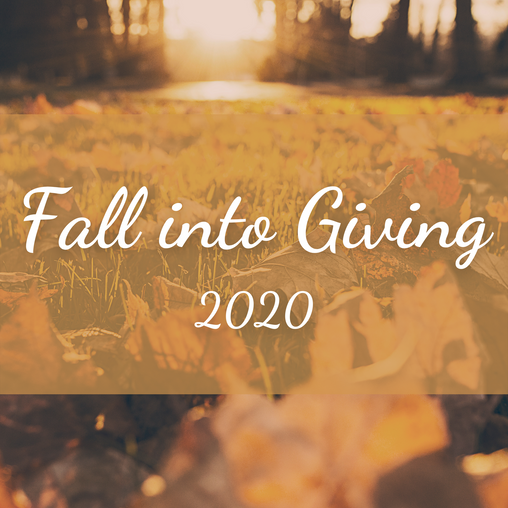 Fall Into Giving Campaign