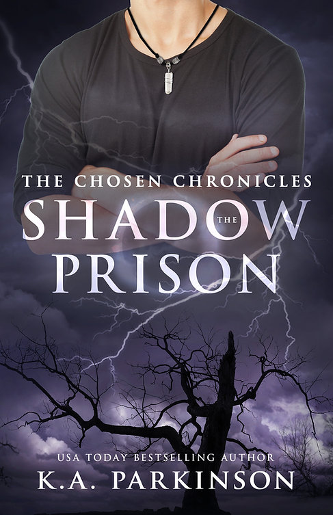 The Shadow Prison-2.jpg