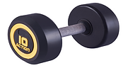 DUMBELL MONOBLOCO - INOX.png