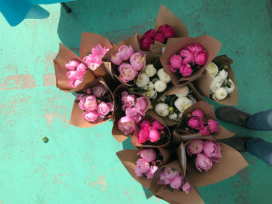 farmers market peony bunches
