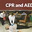 Thumbnail: Combination CPR/AED/Basic FirstAid