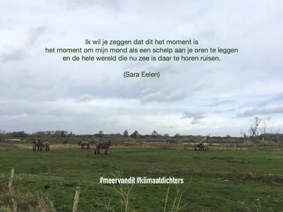 Bourgoyen Gent_gemaaktdoorAnna.jpg