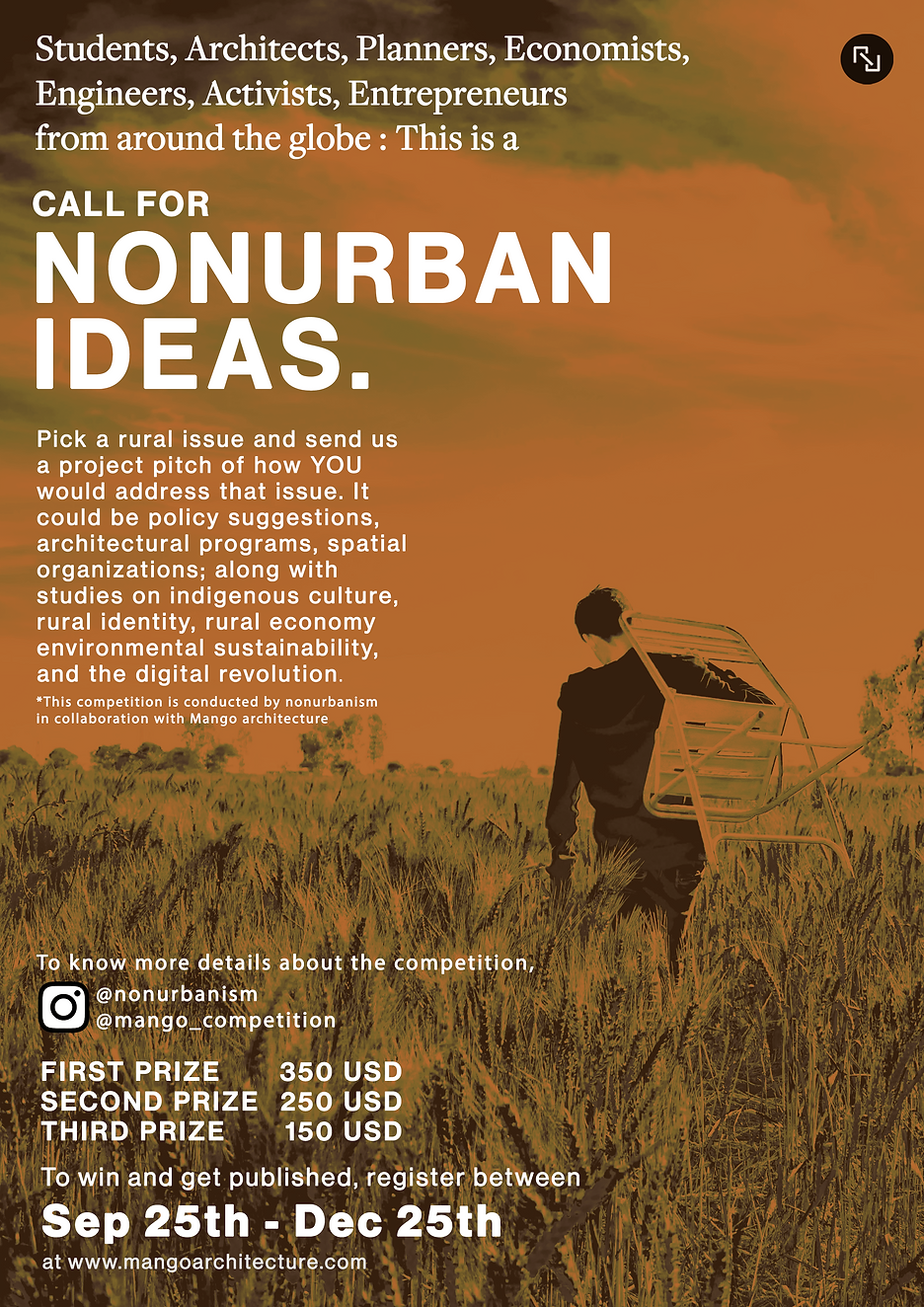 Poster-Call for nuideas - for the websit