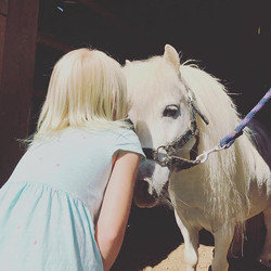 Sunnyboy is lovin' the lovin' ❤️❤️#minia