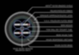 GORGON schematic text_1.jpg