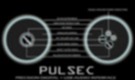 PULSEC Digital labeled JPG_1.jpg