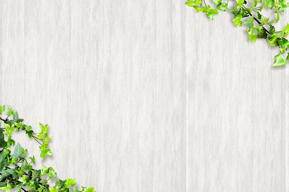 木の壁.jpg