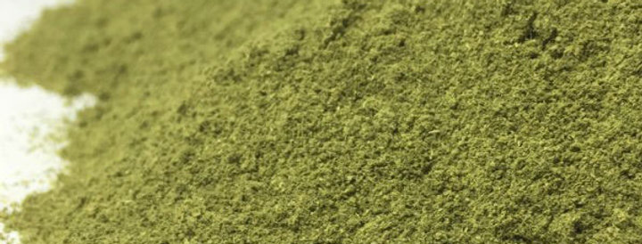 Mango Leaves Powder