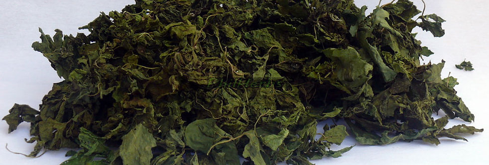 Dried Bitter Melon Leaves