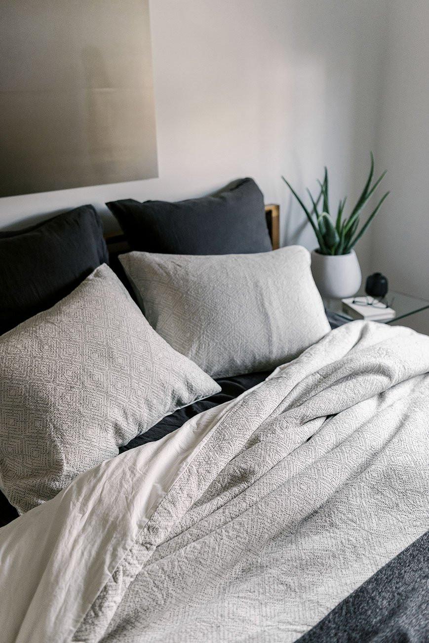 Cozy modern bedroom with aloe vera plant