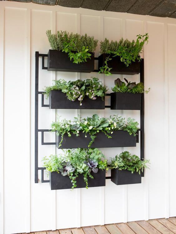 Vertical Garden Fixer Upper