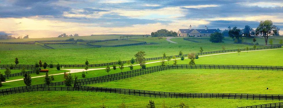 horse farm MAIN CROP 1.jpg