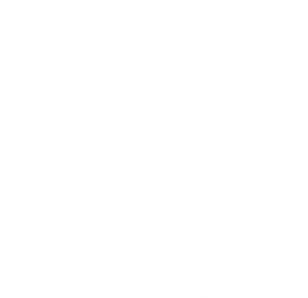 STAINZERHOF_NEU_Logo_weiß.png