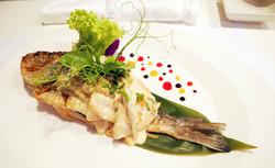 fish 2