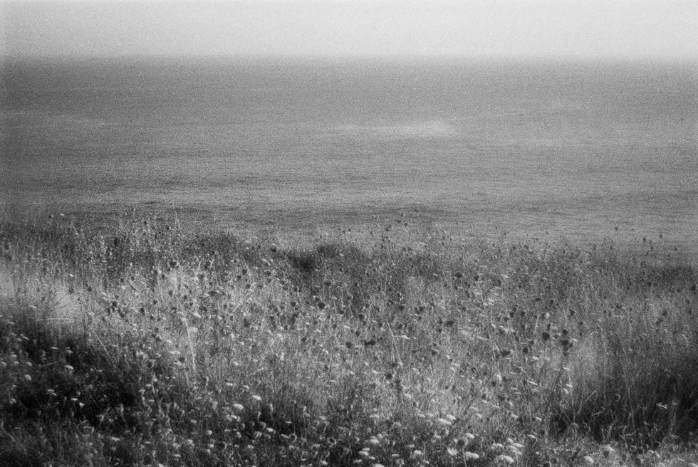 Waters-2.jpg