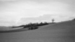 land-1.jpg