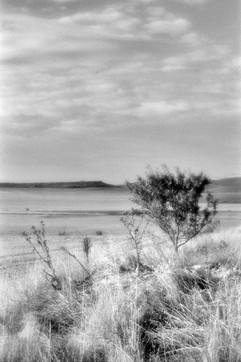 Land-5.jpg