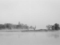 Niebla-7.jpg