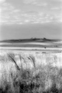 Land-4.jpg